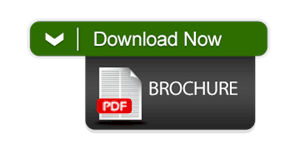 LPO Download Brochure Button